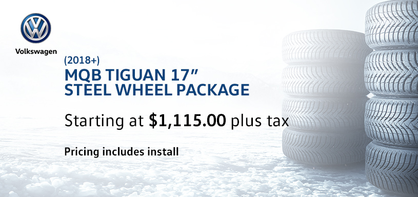 MQB Tiguan 17s Steel Winter Tire Offer